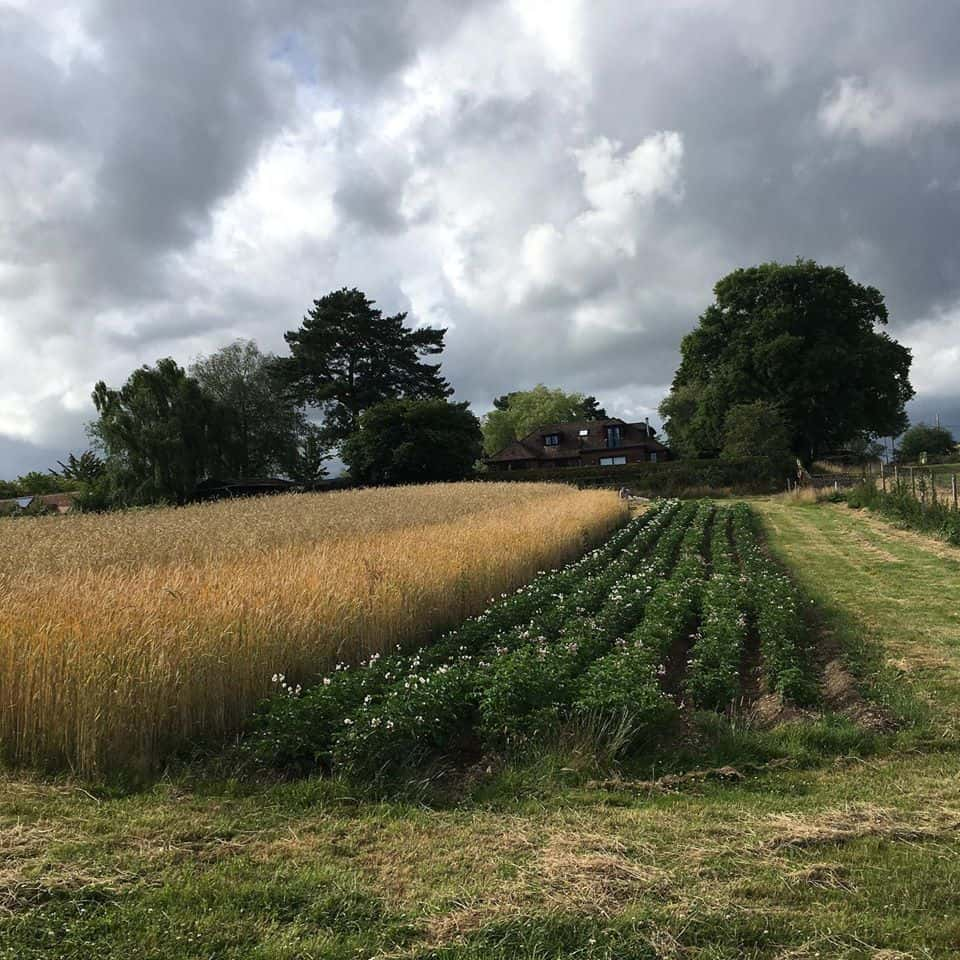 About St Giles Farm